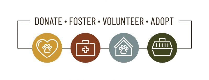 Donate Foster Volunteer Adopt